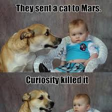 mars dad pun dog dad puns pun dog and meme