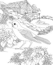 free printable coloring page wisconsin state bird and flower