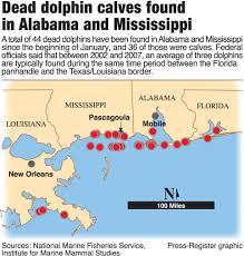 Map Of Mobile Alabama Dolphin Deaths In Alabama Mississippi May Be Caused By Measles