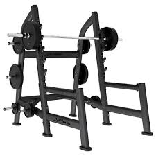 Squat Rack And Bench Signature Series Olympic Squat Rack Life Fitness Strength