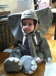 Elephant Halloween Costume Toddler 124 Babies Halloween Costumes U2013 1000 Awesome