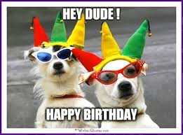 Birthday Dog Meme - happy birthday memes with funny cats dogs and cute animals hey