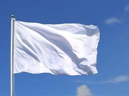 Blue Flag White X Weiße Fahne Für Unsere 5hba 5hcsa Und 5 Htb Hertha Firnberg