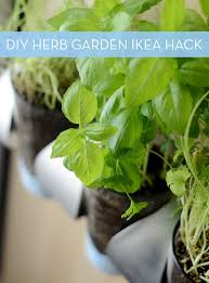 how to indoor herb garden ikea hack curbly