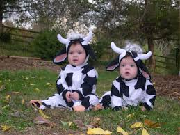 top ten halloween costumes for twins