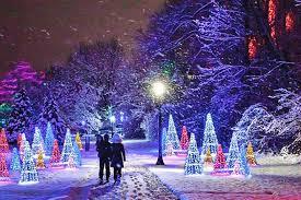 niagara winter festival of lights toronto