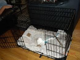 crate training crate training opie u0027s mom u0027s blog