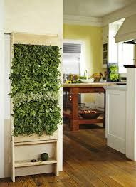 top 10 best plants for your indoor vertical garden urban zeal