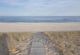 barnegat light rentals pet friendly top 25 long beach island pet friendly rentals tripping com