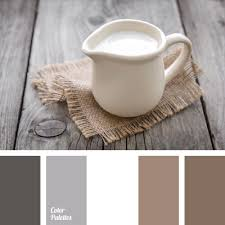 Best  Brown Color Schemes Ideas On Pinterest Brown Color - Brown living room color schemes