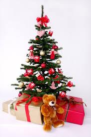 christmas trees the kirkbymoorside town blog
