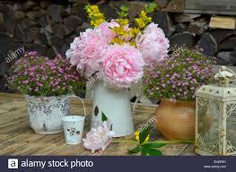 shabby chic flowers garden peonies shabby chic flowers stock photo 79616601 alamy