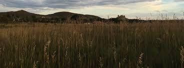 Colorado Wildfire Risk Assessment Portal by Colorado