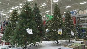 will you buy an artificial or a live tree this ktxs