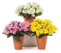 wholesale christmas decorations florist supplies uk wholesale