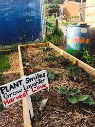 Gardening Pictures Backyard Gardening Grow Pittsburgh