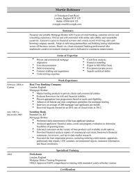 insurance cv examples sample cv uk finance starengineering