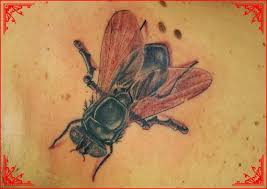 flying animals tattoos pictures tattoos ideas