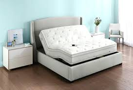 Type Of Bed Frames Bed Frame Options Bed Frame Options Options Fit Your Bedroom Space