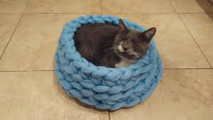 13 cuddly cat beds to keep your cat warm in winter iheartcats com
