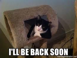 Soon Cat Meme - i ll be back soon cool cat meme generator