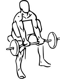 top 3 biceps exercise for size u2014 reuben brooks fitness