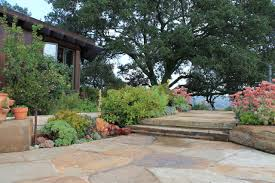 Slate Pavers For Patio by Floor Large Flagstone Pavers Slab With Plants And Big Tree Plus