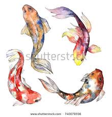 goldfish tattoo stock images royalty free images u0026 vectors