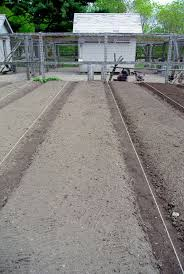 vegetable garden soil testing home outdoor decoration
