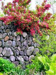 secret garden the gardener u0027s eden
