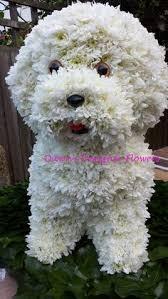 dog flower arrangement for dog flowers floral