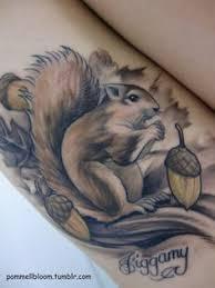 squirrel tattoo by stevie lange moonlight tattoos pinterest