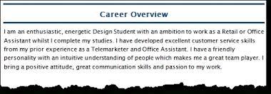 resume professional summary examples redoubtable resume