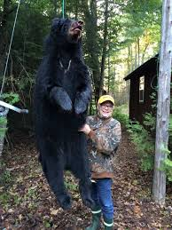 73 year old great grandmother shoots 220 pound michigan black bear