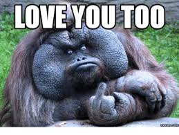 Meme For Love - 25 best memes about love you too meme love you too memes
