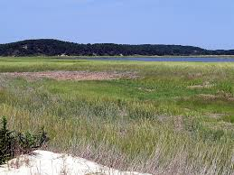 great places to kayak on cape cod u2013 northeast explorer