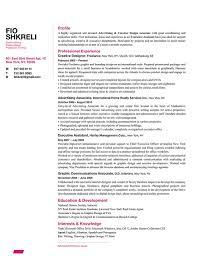 Resume Layout Sample by 80 Best Resume Designs Images On Pinterest Cv Design Resume
