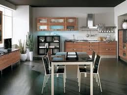 kitchen 4 contemporary kitchen cabinets kitchen modern