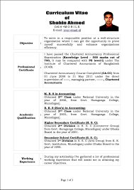 Curriculum Vitae Sample And Format by Sample Curriculum Vitae Template Free Samples Examples
