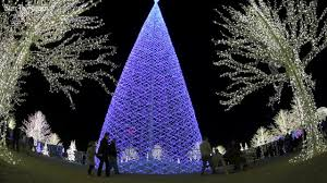 vancouver christmas light maze enchant world s largest christmas light maze youtube