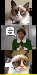 Buddy The Elf Meme - grumpycat meme for more grumpy cat stuff gifts and meme visit www