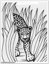 coloring realistic jungle animal coloring pages books photo