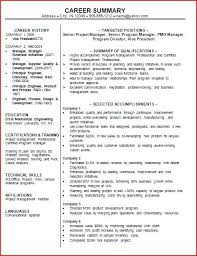 professional summary for resume exles summary for resumes career summary executive summary resume