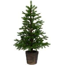 7 5 foot oslo half pre lit clear artificial tree oslo tree sale