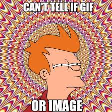 Futurama Meme - futurama fry meme