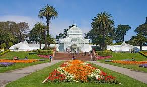 Botanical Garden Golden Gate Park Top 15 Things You Must Do In San Francisco This Summer Golden