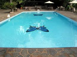 best 25 inground pool covers ideas on pinterest pool covers
