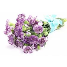 Purple Carnations Purple Carnations 12 Stems Bouquet