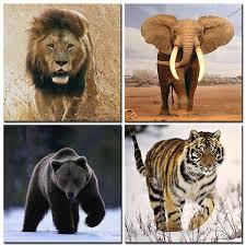 Home Decor Elephants Popular Elephants Lions Buy Cheap Elephants Lions Lots From China