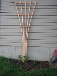 How To Build Trellis Free Trellis Plans And Listener Questions How To Build A Trellis